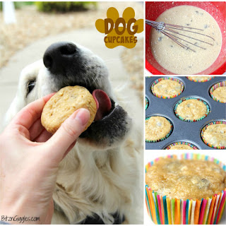 Homemade Low Fat Dog Food Recipes