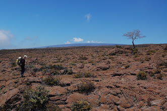 Photo: Around 8,000 ft Mauna Loa's distant summit dome becomes visible.