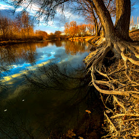 Boise River winter  by Charles Knowles - Landscapes Waterscapes