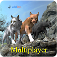 Cat Multiplayer icon