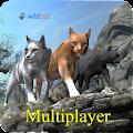 Cat Multiplayer