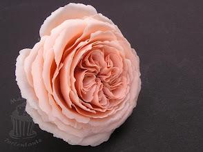 Photo: Englische Rose, hergestellt aus selbstgemachter Blütenpaste