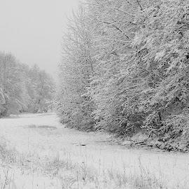 by Cristian Nicola - Black & White Landscapes