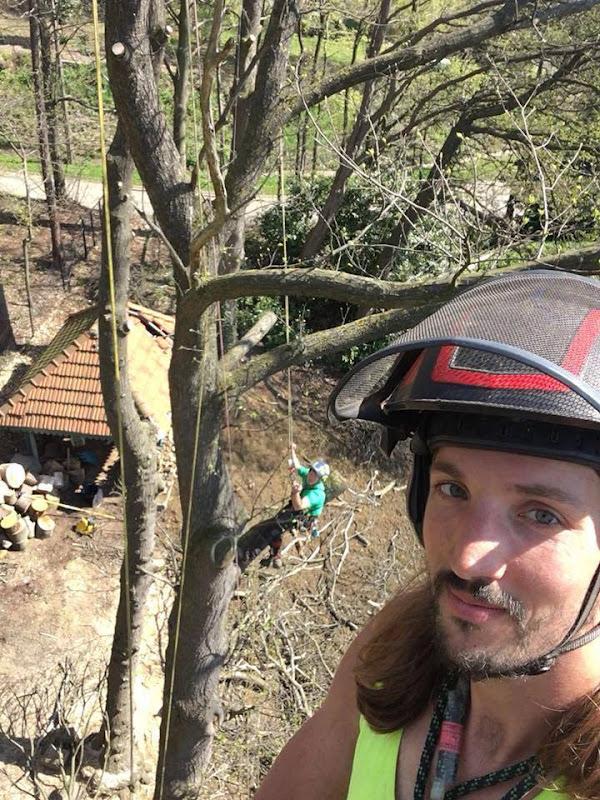 We waren er ook dit jaar weer bij op de  LB-boomklimwedstrijden