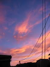 Photo: 夕焼け雲