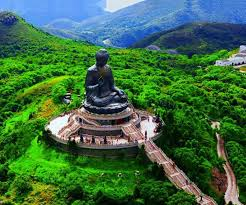 Image result for tian tan buddha at night