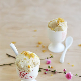 Powdered Milk Ice Cream Recipes