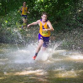 Olde English XC by Dawn Coen - Sports & Fitness Running ( running, duhawks, splash, water, cross country )