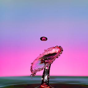 by Nick Vanderperre - Abstract Water Drops & Splashes ( water, 2017, macro, red, rood, druppel, d7000, nikon, rainbow, 105 mm,  )
