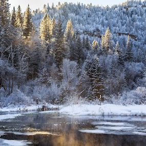 Mist by Angelica Less - Landscapes Waterscapes ( stream, snow, south dakota, winter, mist )