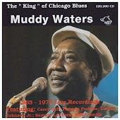The King of Chicago Blues