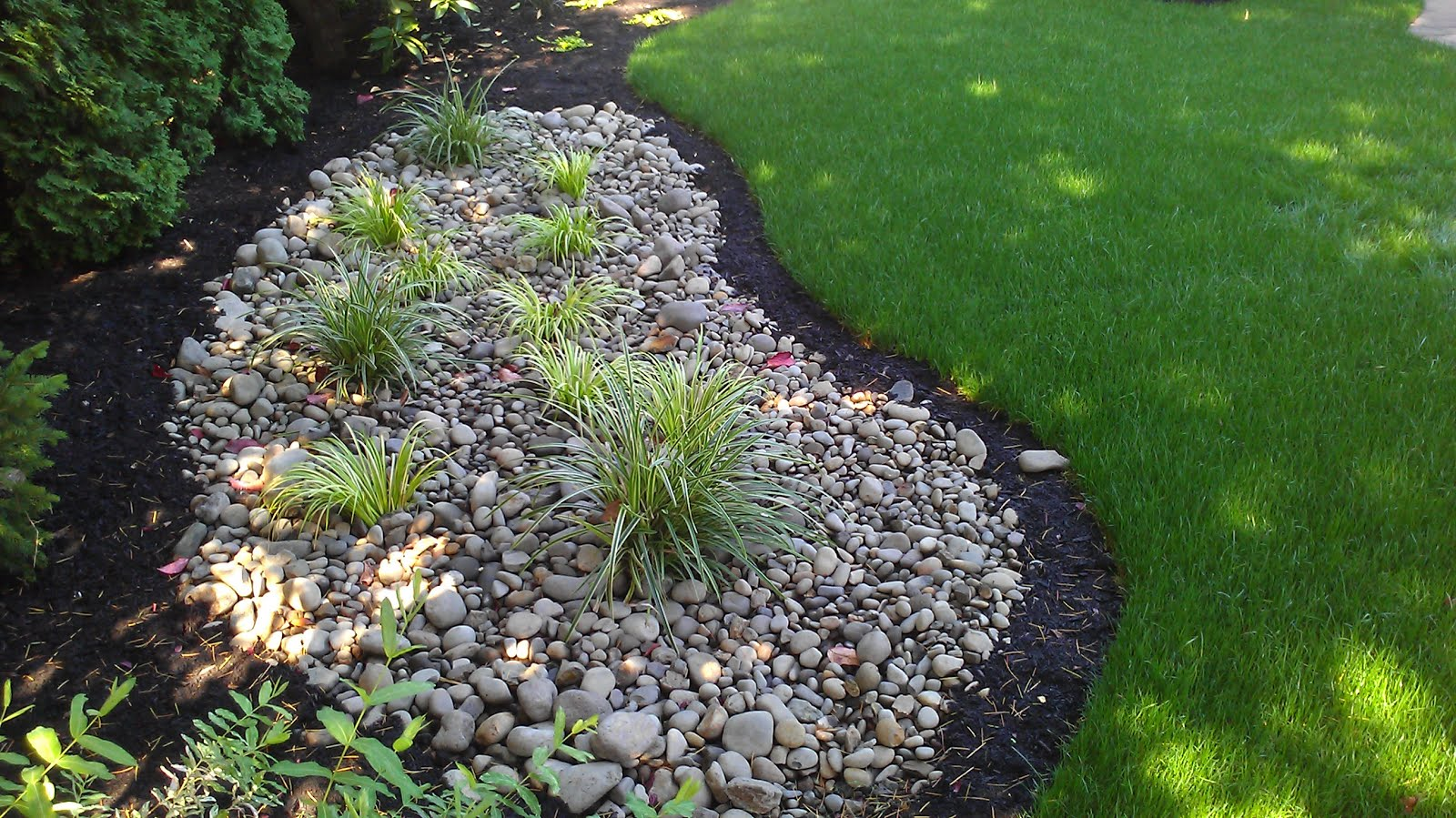 Build A Rain Garden Be Proactive With A Functioning