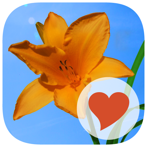 640 Photos 拼字 App LOGO-硬是要APP