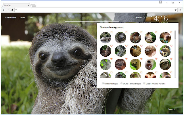 Sloth Wallpapers Sloths New Tab Freeaddon Com