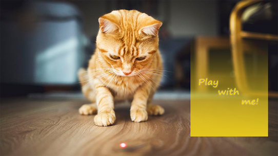 Laser for cats. Lazer pointer. Cat toy simulator 2