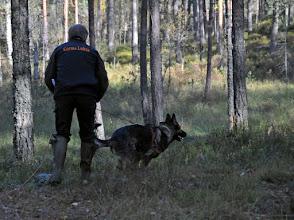 Photo: Torbjörn og Gorms Lukas i sporoppsøket.