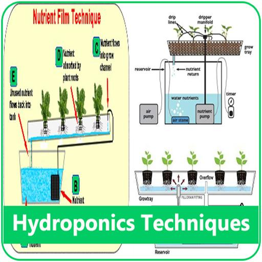 Hydroponics Techniques System