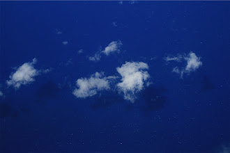 Photo: Low ocean clouds and their shadows.  South of Maui from 25000ft.