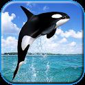 Whale Live HD Wallpaper icon
