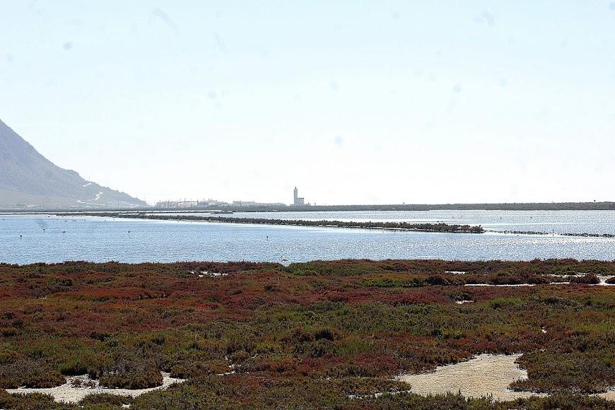 Parque Natural Cabo de Gata-Níjar, las Salinas.