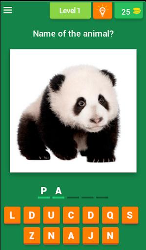 Baby Animal Quiz