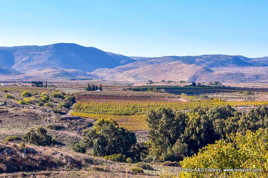 Пейзаж. Фоторепортаж об экскурсии на север Израиля.