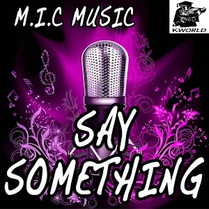 2013 M I C Music: Say Something Im Giving Up On You