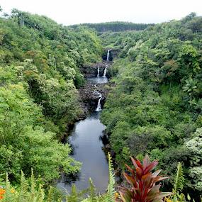 Uma Falls by Anastasiya Manuilov - Nature Up Close Water ( hawaii, big island )
