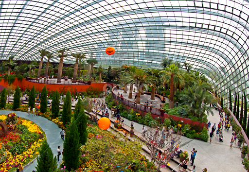 flower dome at gardens by the bay singapore by surya iskandar travel locations landmarks