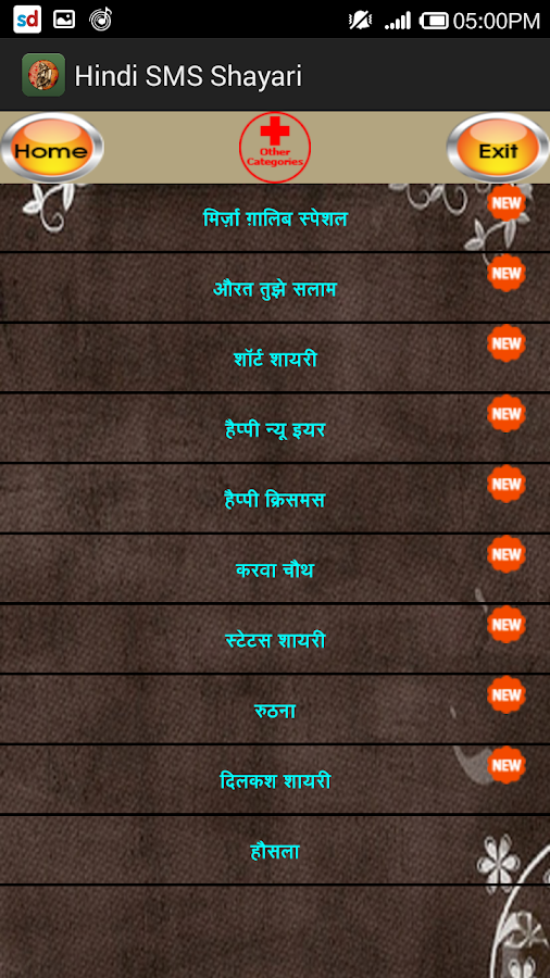 Hindi SMS Shayari- screenshot
