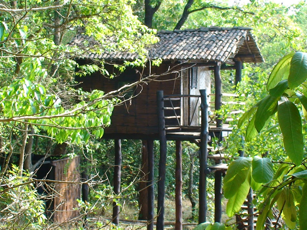 nersa-best-places-to-visit-nearby-goa_image
