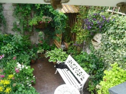 Malá zahrada Nápady - náhled