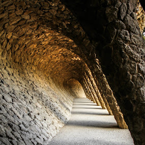 Park Guell by Rui Quinta - Buildings & Architecture Public & Historical (  )