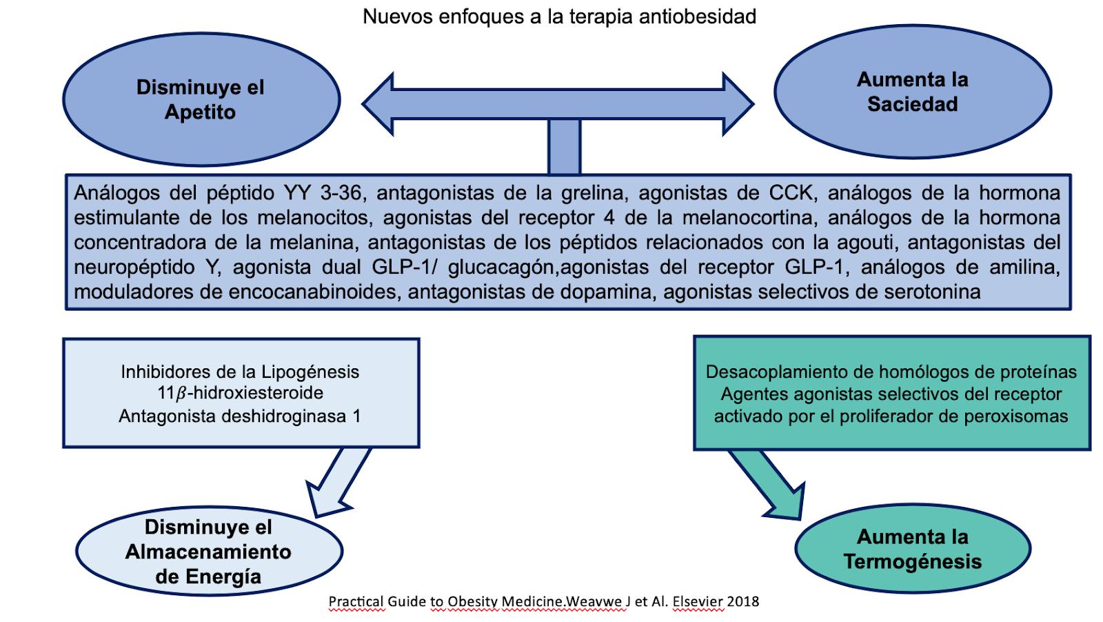 Nuevos Enfoques a la Terapia Antiobesidad
