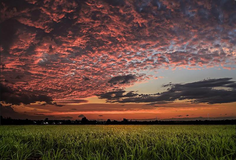nuvole di mezza estate di massimo bertozzi