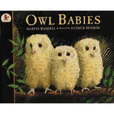 Image result for owl babies by martin waddell