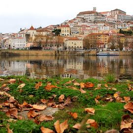 Coimbra by Gil Reis - City,  Street & Park  City Parks ( rivers, parks, places, city, travel, water )