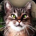 Street Cat Survival Simulator icon
