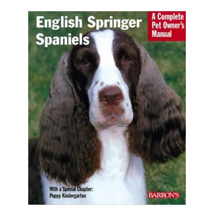 English Springle Spaniels CPOM T. Ditto 2856-6
