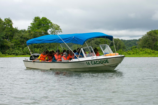 Tour-boat-at-Monkey-Island.jpg -  A tour boat plies an inlet off Gatun Lake in Panama.