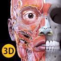 Anatomy 3D Atlas icon