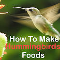 How to make food for hummingbirds icon