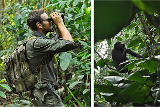 Photo: A good pair of binoculars is essential to make the most of a trek in the rainforest