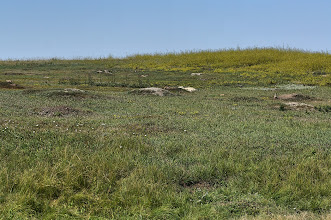 Photo: Prairie dog town near the park entrance - look carefully for the residents.