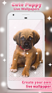 Cute Puppy Live Wallpapers 🐶- screenshot thumbnail
