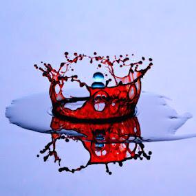 Broken Crown by Yan Kebak - Artistic Objects Still Life