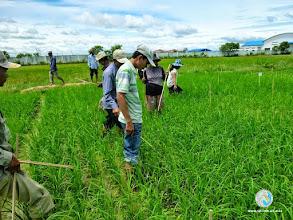 Photo: CFPAR for Takeo province farmers , Lvea Village, Ang Popel commune, Korng Pisey district, Kampong Speu province (28-29 Aug2014)