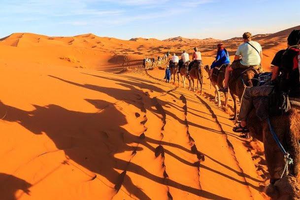 Reserva de Conservação do Deserto de Dubai