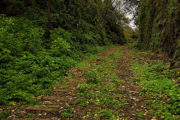 Il sentiero della Vecchia Ferrovia di MarcoRapisarda