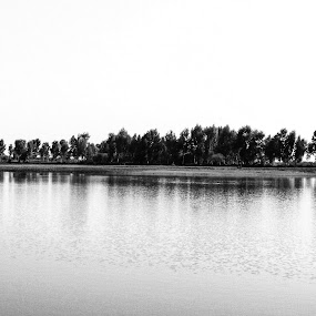 Peaceful and Relaxing by Muhammad Gujjar - Black & White Landscapes ( bird, peaceful, nature, tree, relaxing, river, relax, tranquil, tranquility,  )